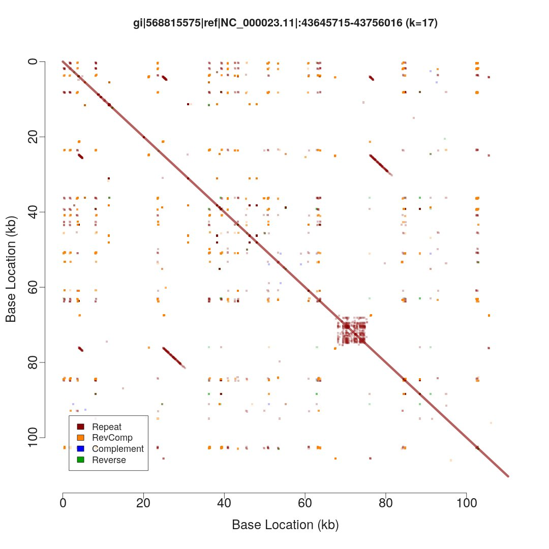 Repeat patterns represented as a dotplot